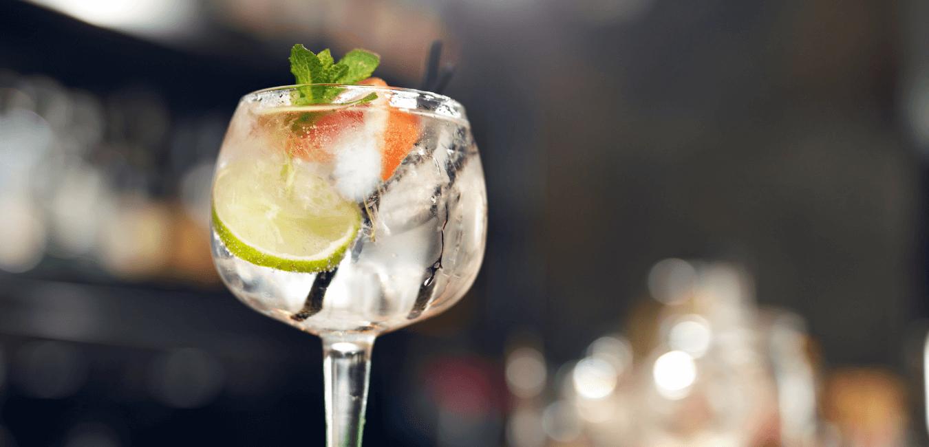 como preparar el gin tonic perfecto